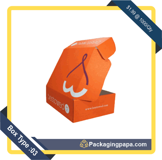 Custom Colored Mailer Boxes 3
